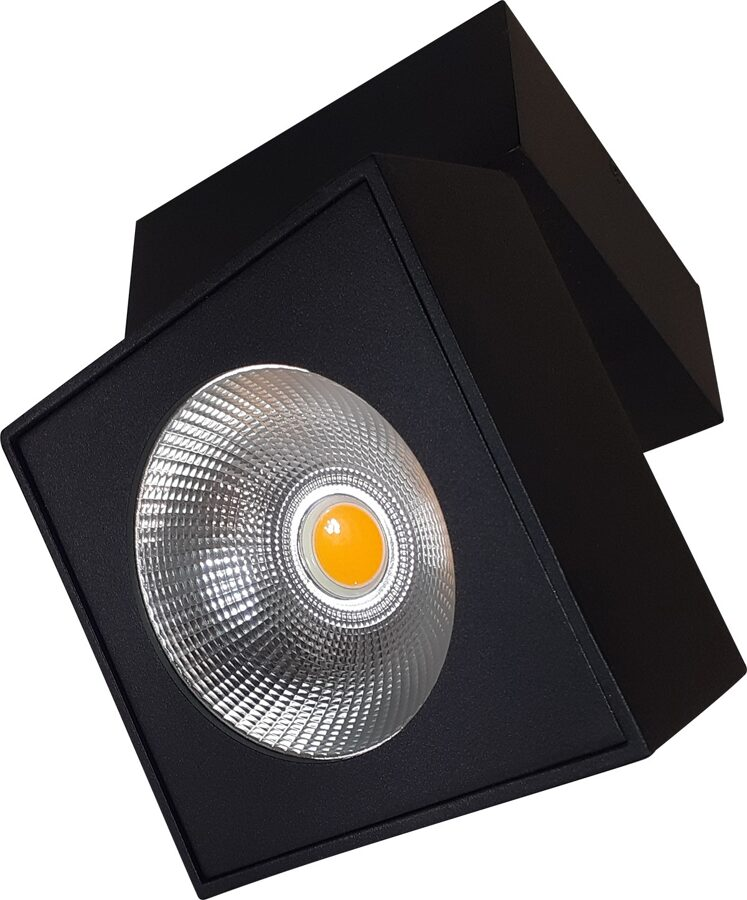 Kryptinis šviestuvas ARTU C0191