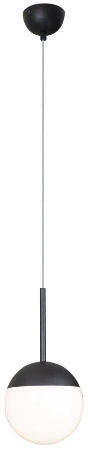 Pakabinamas šviestuvas DALLAS 1 (juodas)